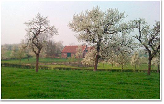 omgeving Eckelrade